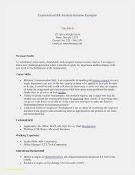 25 Better Automotive Technician Resume Letter Sample Collection