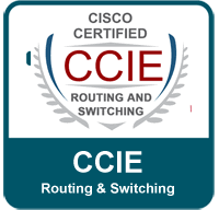 routing and switching ccie png
