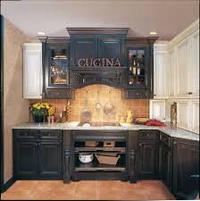Furniture For Kitchen Cabinets Standard Kitchen Cabinet Doors Alkamediacom