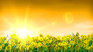 Image result for summertime