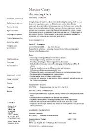 Resume Format Examples For Job Magnificent Accounting Resume Template