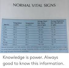 Normal Vital Signs Average Respiratory Rate Breathsmin Or