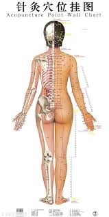 Acupuncture Nelson And Nelson Chiropractic In Fayetteville Nc