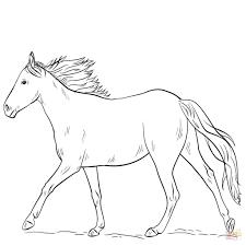 Skillful Design Cavallo Da Colorare Disegni Di Cavalli E Stampare