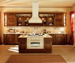 Oak Kitchen Cabinets White Appliances my kitchen has white