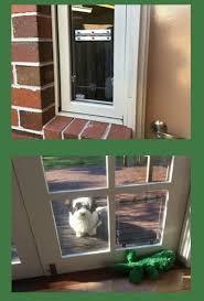 pet doors australia free