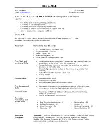 Sample Resume Skills In Computer Sidemcicek Com