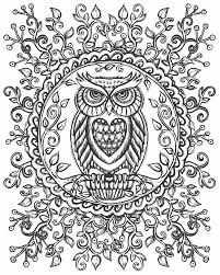 Color Your Own Wall Art Owl