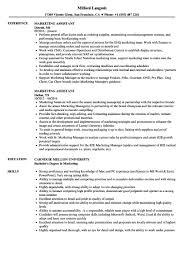Marketing Assistant Resume Samples Velvet Jobs Marketing