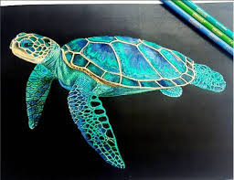 Small Picture Best 20 Sea turtle painting ideas on Pinterest Sea turtle art