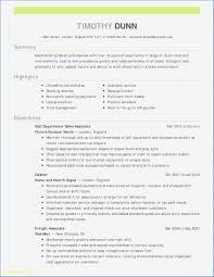 Template It Resume Format Pdf Resumes Format Pdf Sample