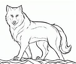 Small Picture Wolf Coloring Pages