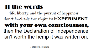 Terrence McKenna Quote Life Liberty And The Pursuit Of Happiness Inspiration Life Liberty And The Pursuit Of Happiness Quote