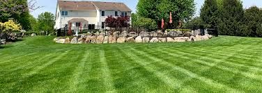Lawn Care Montgomery County Landscaping Services Skippack