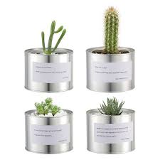 small plants for office. Mkono Metal Cactus Planters Round Cacti Pots Small Plants Succulent Containers With Proverbs For Indoor Office