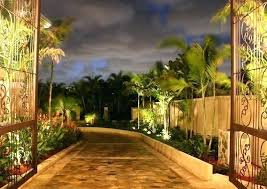tropical outdoor lighting. Palm Tree Light Outdoor Lighting Used In Landscape Border Air . Tropical G
