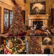 Christmas Tree Decorating Ideas  Sofas U0026 More Knoxville TNThe Living Christmas Tree Knoxville Tn