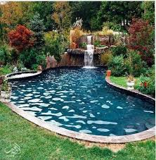 Image Inground Saltwater Pinterest Salt Water Pool For Small Space Pools Small Inground