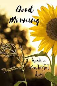 35 Good Morning Quotes And Wishes With Beautiful Images Tailpic