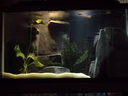 picture of river aquarium with custom concrete 3d background