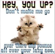 Good Morning Funny Quotes Unique Funny Good Morning Quote Quote Number 48 Picture Quotes