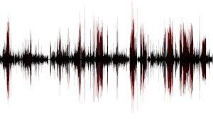Slikovni rezultat za formati zvucnih videozapisa i njihova obrada