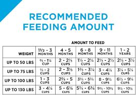Particular Purina Dry Dog Food Feeding Chart Purina Dog Food