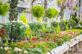 sus garden centres newhaven