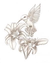 Hummingbird Drawing Tattoo At Getdrawingscom Free For Personal