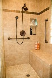 Ada Bathroom Design Ideas Best Inspiration Design
