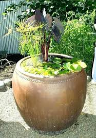 water garden containers supplies container colorful for sun and shade gardening fountain kit indoor conta