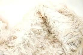 how to wash a wool rug washing a wool rug how clean wool rug cat urine