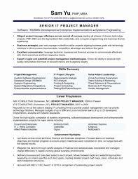 It Director Resume Elegant Resume Format Sales Manager Inspirational