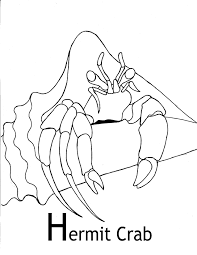 Small Picture Hermit Crab coloring page Animals Town Free Hermit Crab color