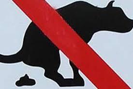 Hunde Exkremente Sorgen In Gelsenkirchen Für ärger Wazde