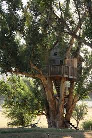 Post Ranch Inn BigSur  One Of The Most Memorable Stays Ever In A Treehouse Vacation California