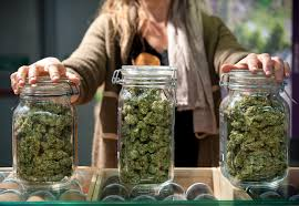 How to sell weed legally in Canada: A beginner's guide - Macleans.ca