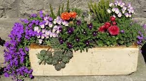 featured image adding interest with these fabulous garden box ideas
