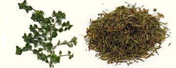 Which Herbs and Spices are good for you (cinnamon, paprika, etc)