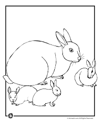 Small Picture Baby Bunny Coloring Pages Woo Jr Kids Activities