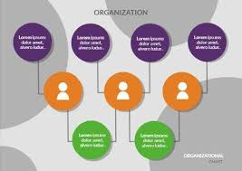 Use This Organizational Chart Maker To Create An Effective