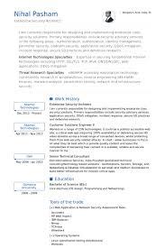 Enterprise Security Architect Resume samples