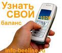 Как узнать баланс на билайне с мобильного