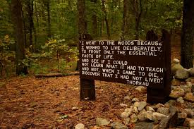 analysis of whether or not transcendentalism is relevant to modern thoreau s quote near his cabin site walden pond