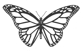 Small Picture BUTTERFLY coloring pages Monarch butterfly Clip Art Library