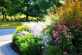 Small Picture Garden Ideas New England And Decorating