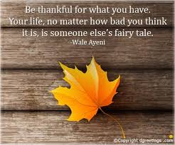 Thanksgiving Quotes Gorgeous Thanksgiving Quotes Famous Thanksgiving Gratitude Saying Dgreetings