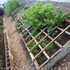 plant spacing in square foot gardens