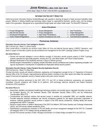 Security Manager Sample Job Description Cyber Analyst Resume