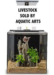 ecoqubec aquarium desktop aquaponics system fish tank office desk aquarium